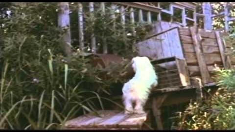 Benji Trailer 1974