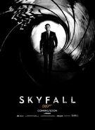 Skyfall Teaser Poster Classic Bond Shades Gray 1337271907