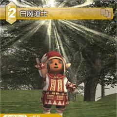 Tarutaru as a White Mage.