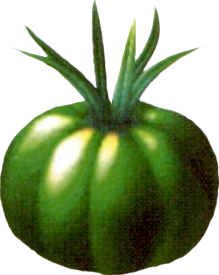 File:Sylkis Greens.png