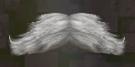 LRFFXIII Servant's Mustache