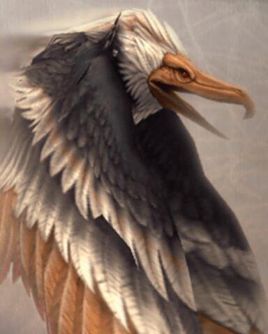 File:Dive Talon.jpg