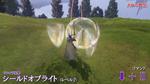 DFF2015 Shield of Light - Radiant Blade 2