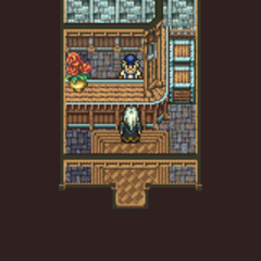 Narshe's Item Shop (GBA).