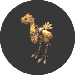 Chocobo Rental<br />Fephita<br />(G-11)