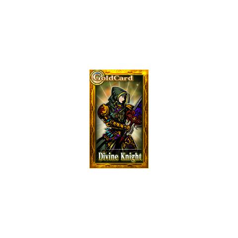 Divine Knight (male).