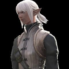 A full female Elezen render.