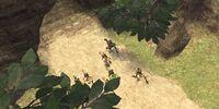 Chocobo Races (Final Fantasy XI)