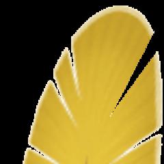 Bartz's Chocobo feather.