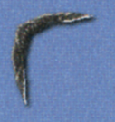File:FF4-Boomerang-DS.png