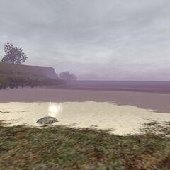 Ergon Locus<br />Immaculate Sands<br />(J-11)