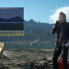 Ignis in camp.