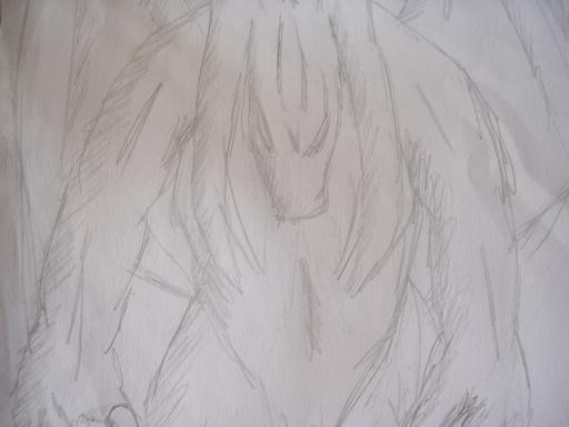 File:Devilmut.JPG