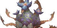Leucophylla