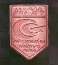 LRFFXIII PSICOM Mobile Medal