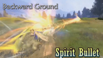 DFF2015 Spirit Bullet