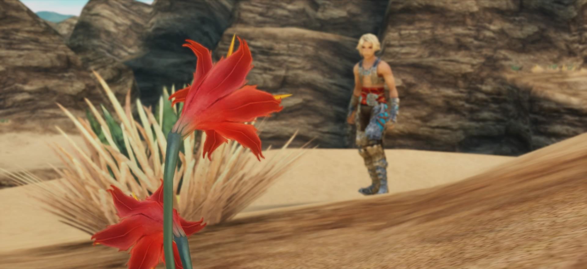 File:Galbana lilies.jpg
