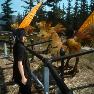 Chocobo stables.