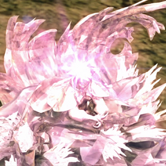 Caetuna crystallized.