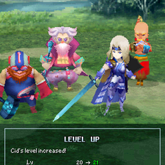 Level up pose (DS).
