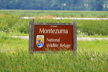 Montezuma National Wildlife Refuge, New York entering sign