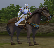 FE9 Bow Knight (Astrid)