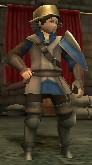 FE13 Mercenary (Donnel)