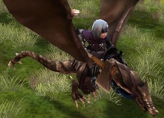 File:FE14 Wyvern Rider (Beruka).jpg