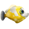 Spotted Filefish (1)