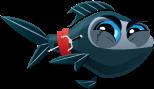 Little-Aquarium-Ninja-Fish-Adult