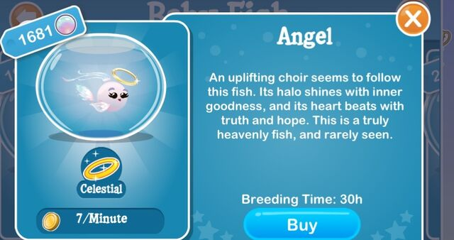 File:Angel fish.jpeg