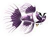 File:Little-Aquarium-Vampire-Fish-Adult.png