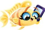 File:Adult Gossip Fish.jpg