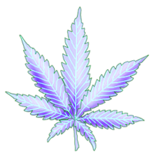 Cannabis crystal rain