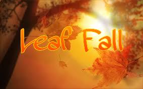 2015-10-10--19-17-54