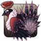 Coral Grouse