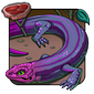 Weird Purple Skink