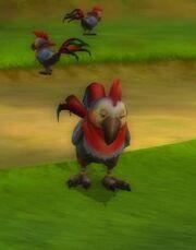 Ground Parrot