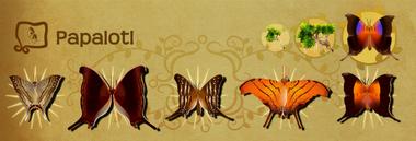 Papalotl Set§Flutterpedia