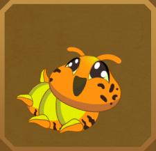 Wallace's Golden Birdwing§Caterpillar