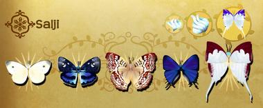 Salji Set§Flutterpedia