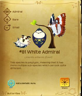 White Admiral§Flutterpedia