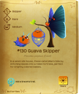 Guava Skipper§Flutterpedia