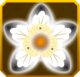 Salji Set§AF1 100%
