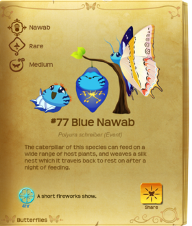 Blue Nawab§Flutterpedia