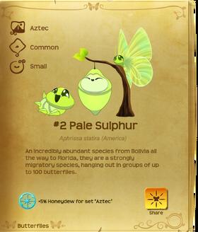 Pale Sulphur§Flutterpedia