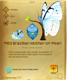 Brazilian Mother-of-Pearl§Flutterpedia