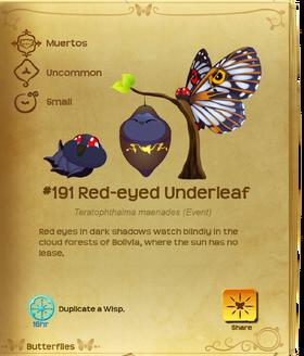Red-eyed Underleaf§Flutterpedia