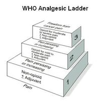 WHO analgesic ladder