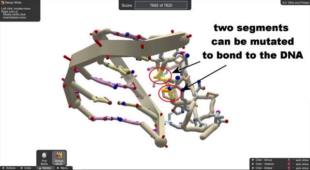 File:Level 8-4 DNA and Protein.png